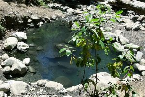 Wall Creek Hot Springs | Meditation Pool