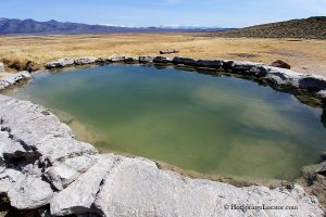 Crab Cooker Hot Springs